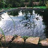 Siena Garden 543288 Filet de protection pour bassin avec bandes 20 x 20 mm 4 x 5 m