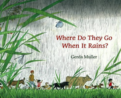where-do-they-go-when-it-rains-by-muller-gerda-2010-hardcover