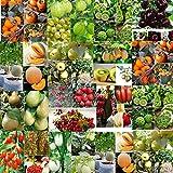Portal Cool 30X Asiatische Birne Samen: Verschiedene Früchte Gemüsesamen Ideal Garten Topf Seltene Pflanzen Zier Dekor