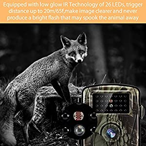 Tilview Trail Camera 12MP 1080P HD Wildlife Camera with IR LEDs Night Vision up to 20M/65FT Hunting Camera with IP66 Spray Water Protected Design