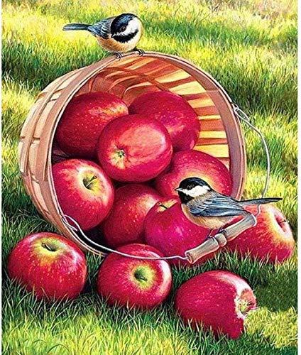 QNJY 3D DIY 1000 Stücke Puzzle Erwachsene Kreatives Spiel Apfel und Vogel Kinder Puzzle-Spiel Geschenk Dekoration 27,5 x 19,5 Zoll