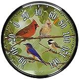 AcuRite 0178112,5pulgadas pared termómetro, pájaros