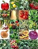 Portal Cool Bio-Obst und Gemüse-Mix