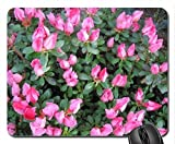 Spring perfume day 07 Mouse Pad
