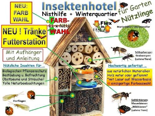XL INSEKTENHOTEL MIT TRÄNKE SD und Futterplatz - 5