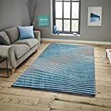 Savoy Teppich mit modernem Design Florhöhe 11 mm Farbe Türkis Größe: 120x170 cm