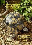 Pflege und Aufzucht der Griechischen Landschildkröte Testudo Hermanni Boettgeri in menschlicher Obhut