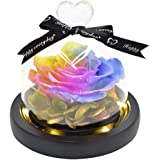 ThreeH Beautiful Flowers Eternal Rose Preserved Real Rose in Glass Dome Creative Gift for Valentine's Mother's Day Christmas
