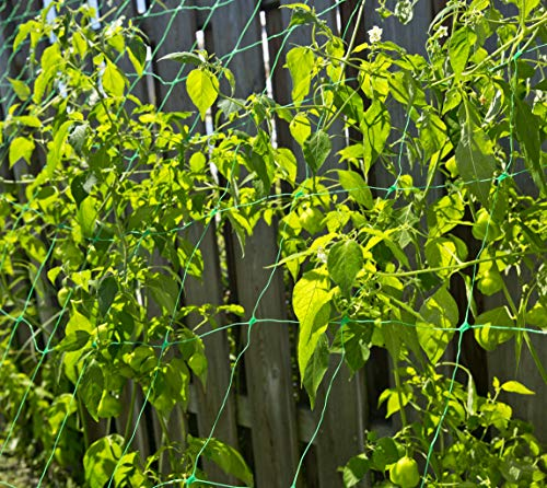 Windhager Ranknetz Pflanzennetz - 4