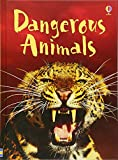 Dangerous Animals (Beginners Series)