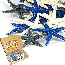 Estrella de mar–Mix 20unidades–Set verdadera Mar Deko–Star Fish en caja de cartón para decorar & Manualidades, plástico, carbón