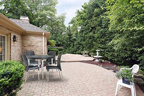Keter Jersey Seater Rattan Outdoor Garden Furniture Dining Set