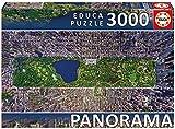 Educa Borrás - Puzzle Central Park, York, 3000 Piezas (16781.0)