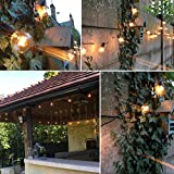 OxyLED-Outdoor-Garden-String-Lights