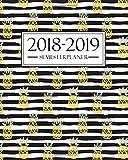 Semesterplaner 2018-2019: Oktober 2018 – September 2019: 19 x 23 cm : Ananas 4176