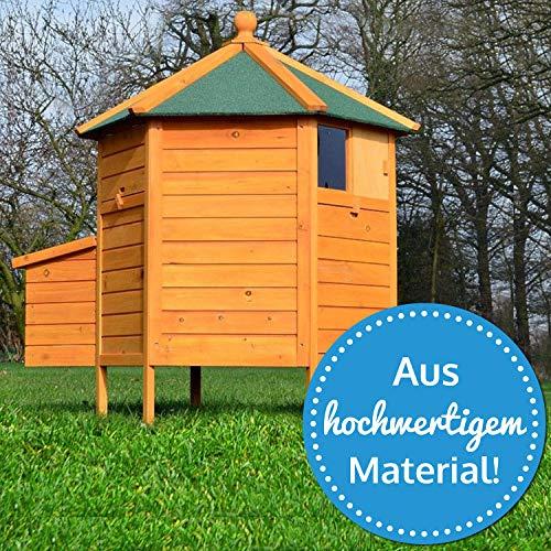 Zooprimus – Hühnerhaus Pavillon - 2
