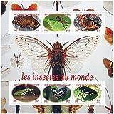 Los insectos de la naturaleza del mundo y sellos de mariposa para coleccionistas con 6 sellos / 2012 / África central