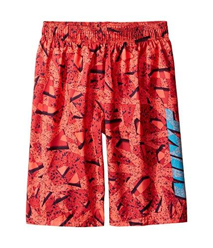 Herren Nike Swim Trunks (Nike Kids Boy's Granite 9