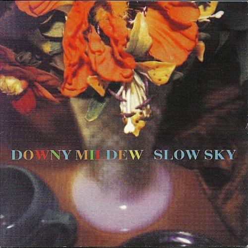 slow-sky