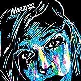 Songtexte von Narziss - Echo