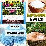 #3: NPK Fertilizer (150 gm) + Epsom Salt (75 gm) - Free Shipping