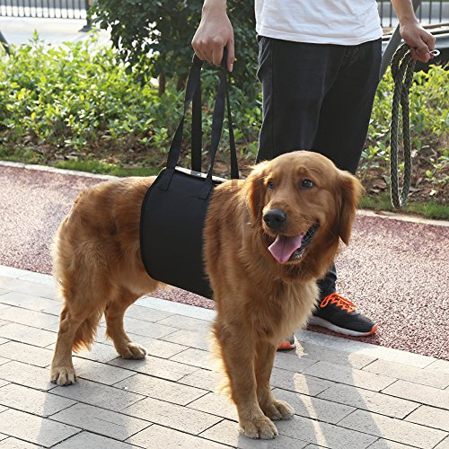 Yosoo Hilfsgurt für Haustiere, klassisches Geschirr, Tragehilfe, Hebehilfe, für ältere oder kranke Hunde zum Treppen hinauf- und hinuntergehen, ein- und Aussteigen aus Fahrzeugen(XL) -