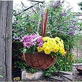 Garden Mile verschiedene Garten hängende Körbe Innen Außen Wandbehang Pflanzgefäß Pflanztöpfe Rattan Weiden Blumen Blumenampel Wandhalter Kokos Auskleidungen - Grün, 16