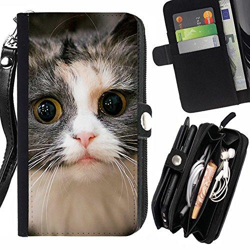 laustart-american-eyes-kitten-wirehair-cat-samsung-galaxy-express-2-g3815-express-ii-credit-card-slo