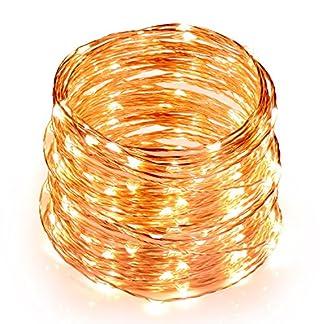 TOPLUS Cadena de luces LED Blanco Cálido, 10m 100 Leds, IP65 Impermeable, Alambre de Cobre para Decoración, Conexión USB, 5V