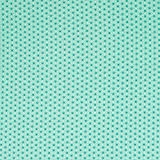 Brittschens Stoffe und Zutaten Stoff Beschichtete Baumwolle | Luna Stern Mint | Stoff zum nähen | Meterware | Wachstuch