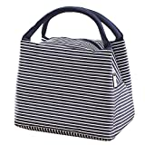 Best Simple Lunch Boxes - Lunch Bag Tote Bag / Reusable Lunch Organizer Review