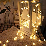 SUPERKIT Globe Lichterkette Warmweiß Außen/Innen LED lichterkette Warmweiß 40LED Außenlichterkette Wasserdicht Beleuchtung Weihnachtsbeleuchtung für Weihnachten Halloween Hochzeit 6M -
