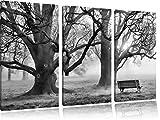 Monocrome, albero e panchina in immagini nebbia 3 PC foto su tela 120x80 su tela, XXL Immagini enormi completamente Pagina con la barella, la stampa arte murale con telaio gänstiger come un quadro o di un dipinto a olio, nessun manifesto o poster