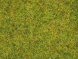 NOCH 08151 - Streugras Sommerwiese, Sonstige Spielwaren, 2.5 mm