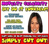 DIY - Do It Yourself Face Mask - Tia Carrere 2016 CPDVD Celebrity Face Mask