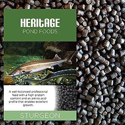 Heritage 2kg Sturgeon Sterlet Fish Food Pellets Premium Sinking Pond Feed Tench Koi 4-6mm (2kg)