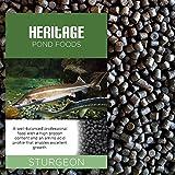Heritage Fischfutter-Granulat für Stör, Sterlet, Schleie und Koi, sinkend, Teichfutter, 4,5mm