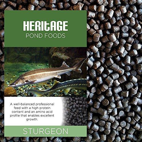 heritage-2kg-sturgeon-sterlet-fish-food-pellets-premium-sinking-pond-feed-tench-koi-4-6mm-2kg