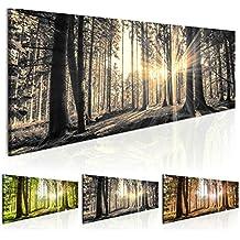 Bilder 135x45cm ! Echtes XXL Panoramabild - Fertig Aufgespannt – TOP – Vlies Leinwand - 1 Teilig - Wand Bild - Kunstdruck - Wandbild - Natur Wald Landschaft c-B-0077-b-c 135x45 cm B&D XXL