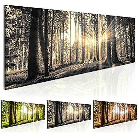Cuadro 135x45 cm - 3 tres colores a elegir - 1 Partes - Formato Grande - Impresion en calidad fotografica - Cuadro en lienzo - Naturaleza bosque Paisaje c-B-0077-b-c 135x45 cm B&D