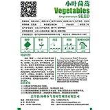 Paquete original de 120 semillas / paquete, folletos TongHao de semillas vegetales olla de verduras de albahaca orgánica semillas vegetales