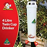 DINE A CHOOK 4l bevitore (2 tazze) automatico