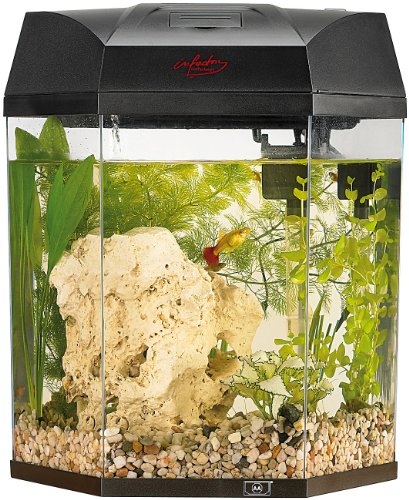 infactory-beleuchtetes-panorama-aquarium-hexagon-komplett-set-19-l