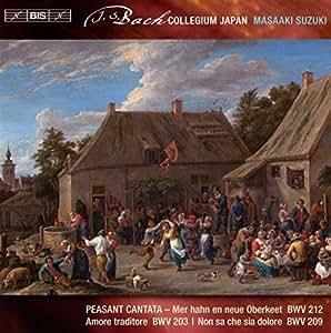 Js Bach Sec Cantatas Vol7