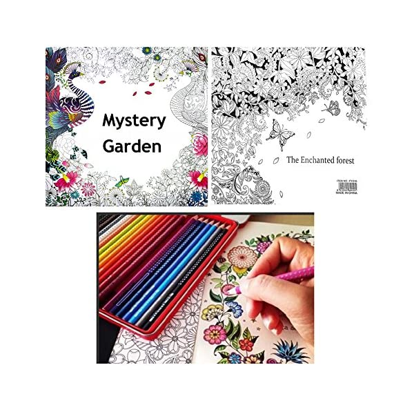 RROVE Libros de Pintura Inglés Misterio para Adultos Garden Treasure Hunt Coloring Painting Book 2