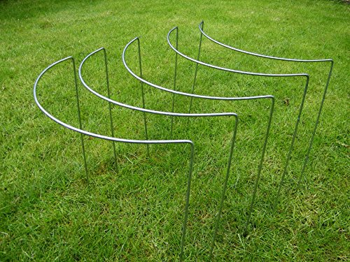 non-rusty-plant-supports-medium-5-pack