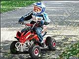 Mini Quad ATV Kinderquad 49 cc Powerquad 49ccm 2012 NEU, Farbe Powerquad:Zufall