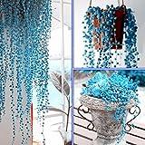 WuWxiuzhzhuo 50Rare Blue Pearl Chlorophytum Samen, Topfpflanzen Anti Strahlung Home Decor Blau