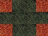 Teppich Modern hypoallergen Easy Duo Modul 8+ 4Stück einfach zum Einbauen cm 50x50. Arancio verde scuro5