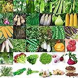 Semi Pacchetto: 7_200Pcs Colori Misti Dolce C: 3-3000Pcs Verdura sementi di ortaggi Semi Garden Courtyard Decor Wholesale Lots
